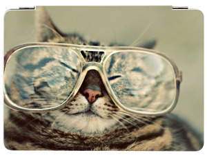smart_cover_air_katze_brille